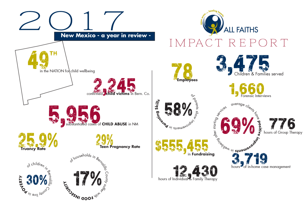 Impact Report 2017 Graphic